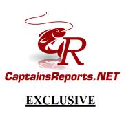 CaptainsReports.NET Exclusives