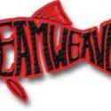 Dreamweaver-Sponsor-Banner