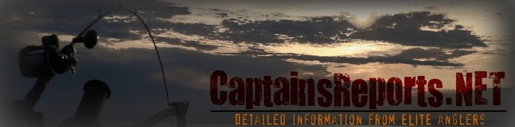 Captain's Reports